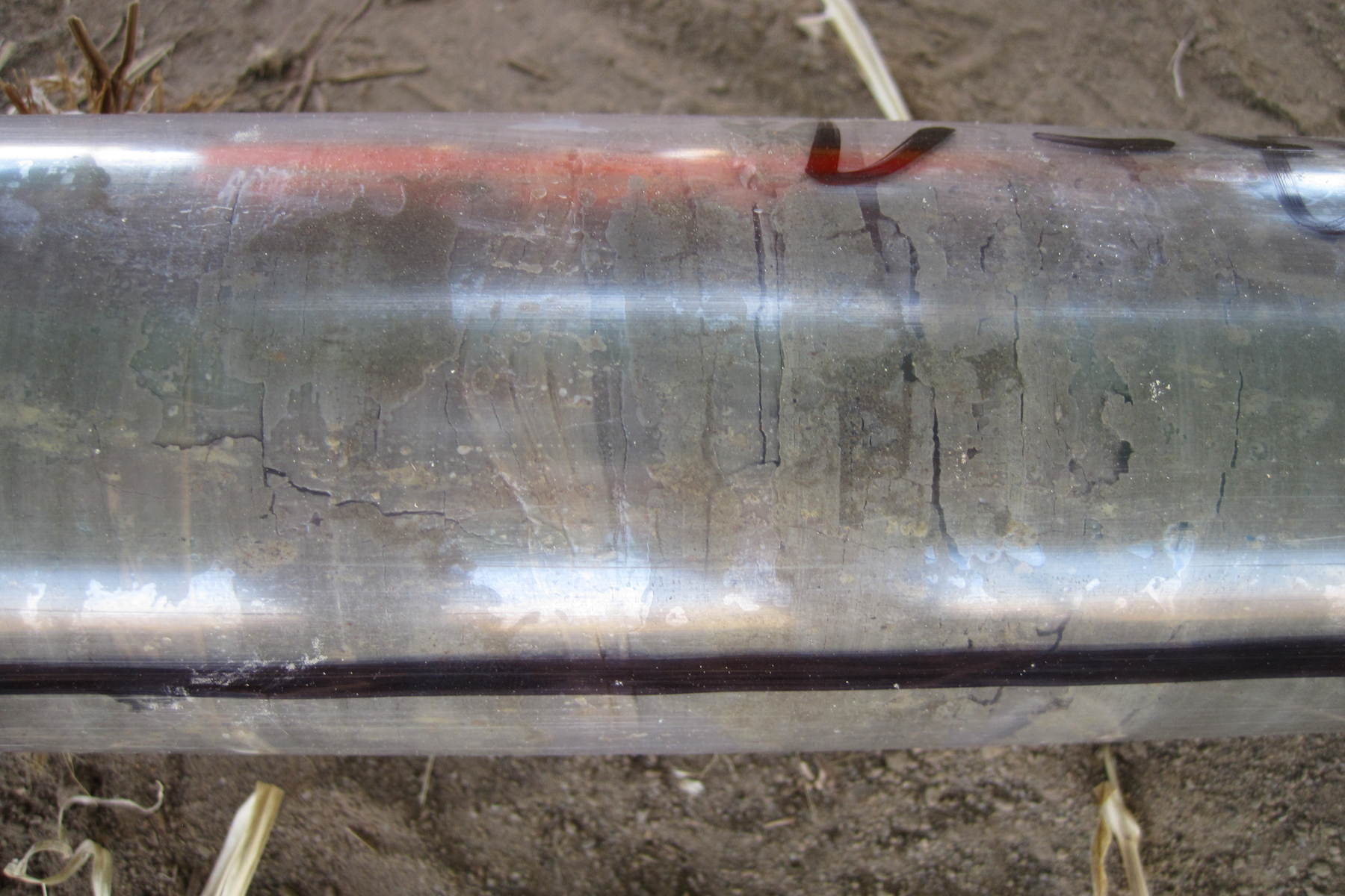 close up view of a clear plastic tube containing banded layers of sediment core