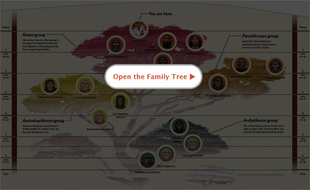 Image of family tree placeholder.