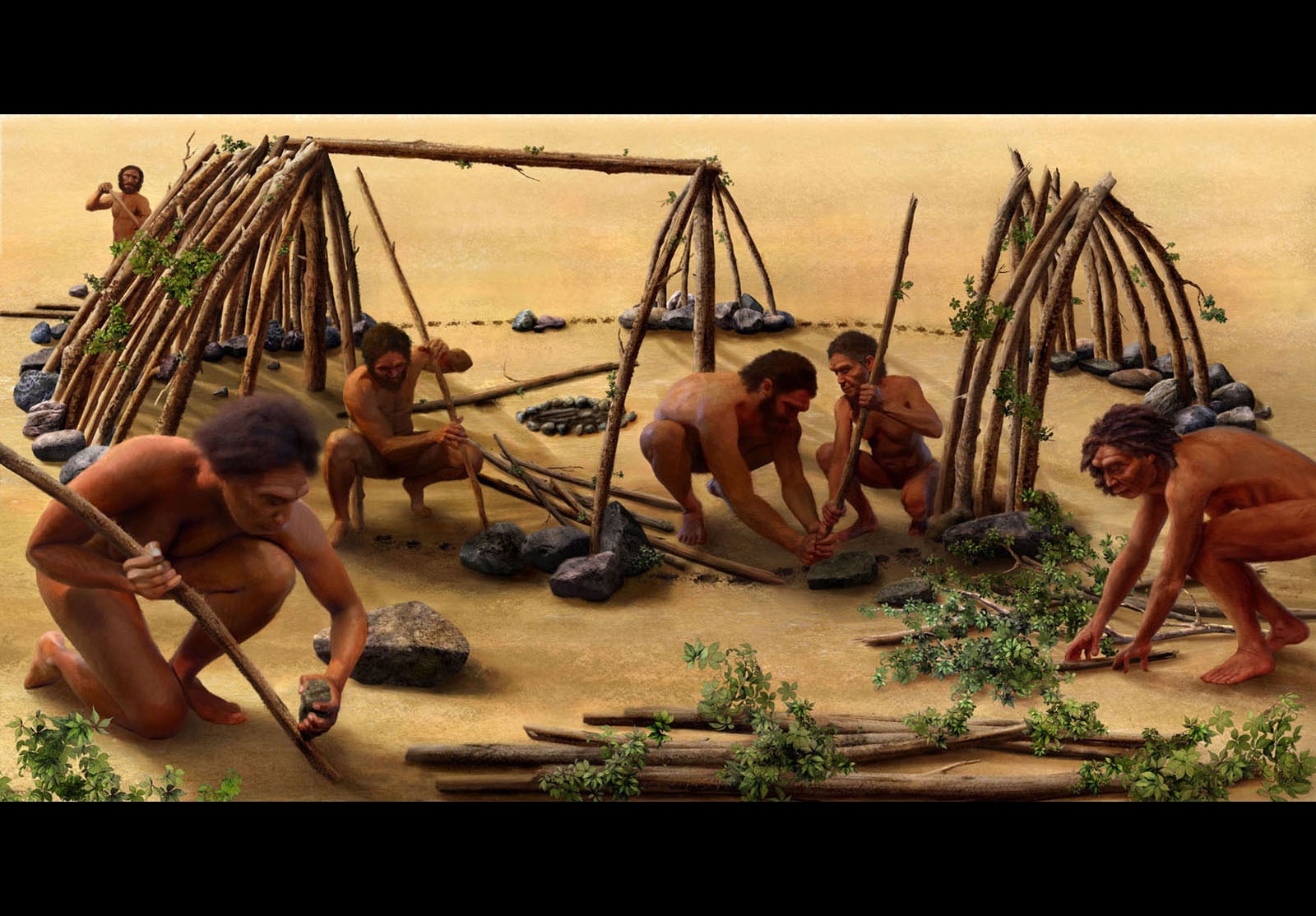 a study on the early hominids living in home bases Diet likely changed game for some hominids 35 by the various hominids living several tools to study the diets of early hominids are.