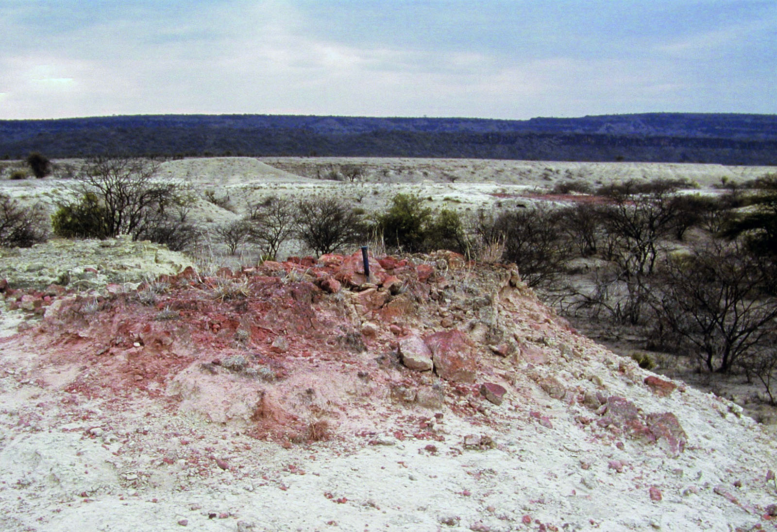 Reddened sediment reflects the burning of dessicated plant remains buried within diatomite sediment, indicating a severe climate shift between wet and very dry. Image courtesy of Richard Potts, Smithsonian Institution.