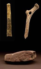 Ishango bone (top left), carved reindeer antler with tally marks (top right), and engraved ocher plaque (bottom). Images courtesy of Chip Clark, James Di Loreto, and Donald H. Hurlbert, Smithsonian Institution.